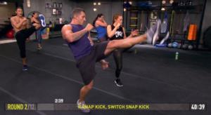 core de force mma power rear snap kick switch snap kick