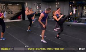 core de force mma power switch snap kick cross front side kick